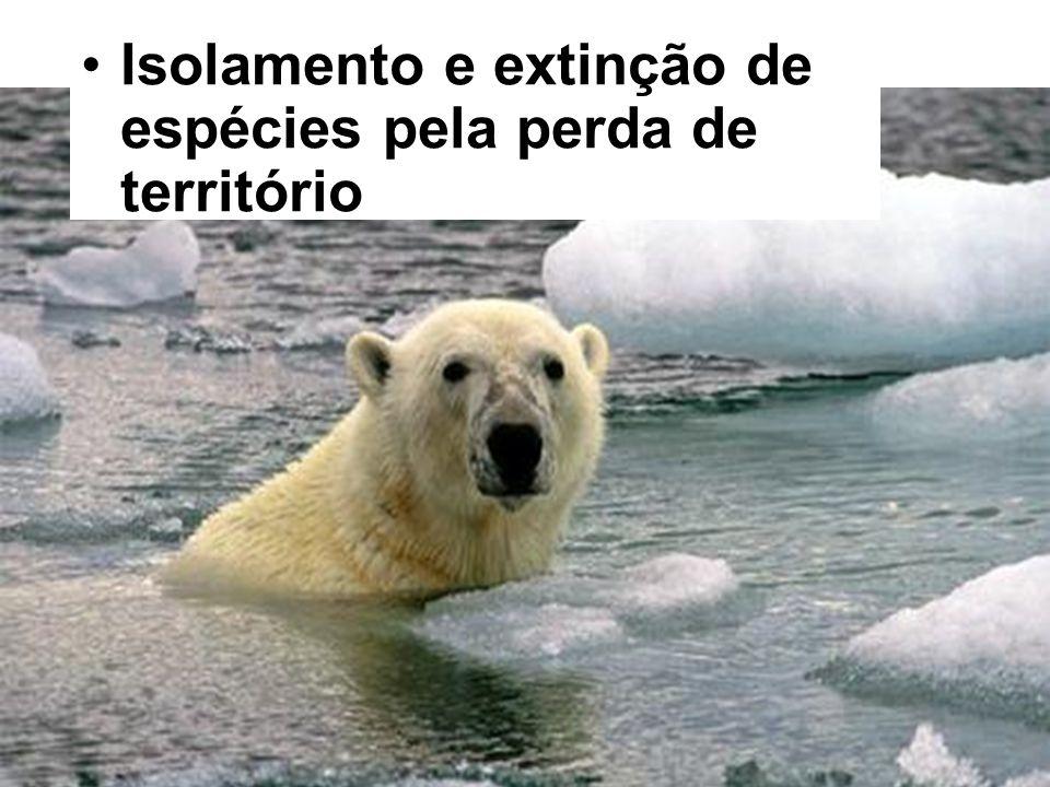 Isolamento e extinção de espécies pela perda de território