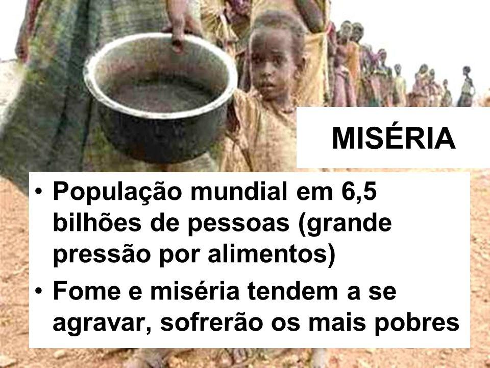 MISÉRIA População mundial em 6,5 bilhões de pessoas (grande pressão por alimentos) Fome e miséria tendem a se agravar, sofrerão os mais pobres