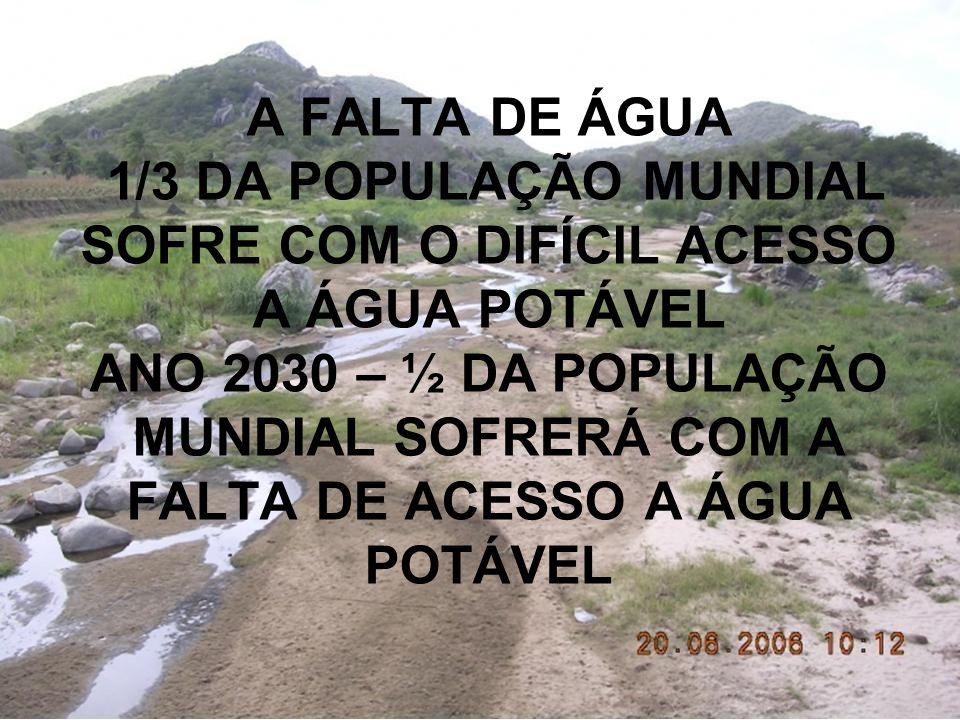 A FALTA DE ÁGUA 1/3 DA POPULAÇÃO MUNDIAL SOFRE COM O DIFÍCIL ACESSO A ÁGUA POTÁVEL ANO 2030 – ½ DA POPULAÇÃO MUNDIAL SOFRERÁ COM A FALTA DE ACESSO A Á