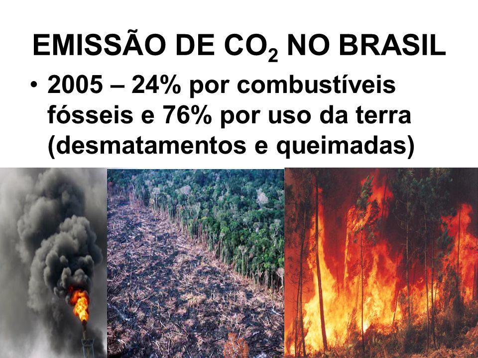 EMISSÃO DE CO 2 NO BRASIL 2005 – 24% por combustíveis fósseis e 76% por uso da terra (desmatamentos e queimadas)