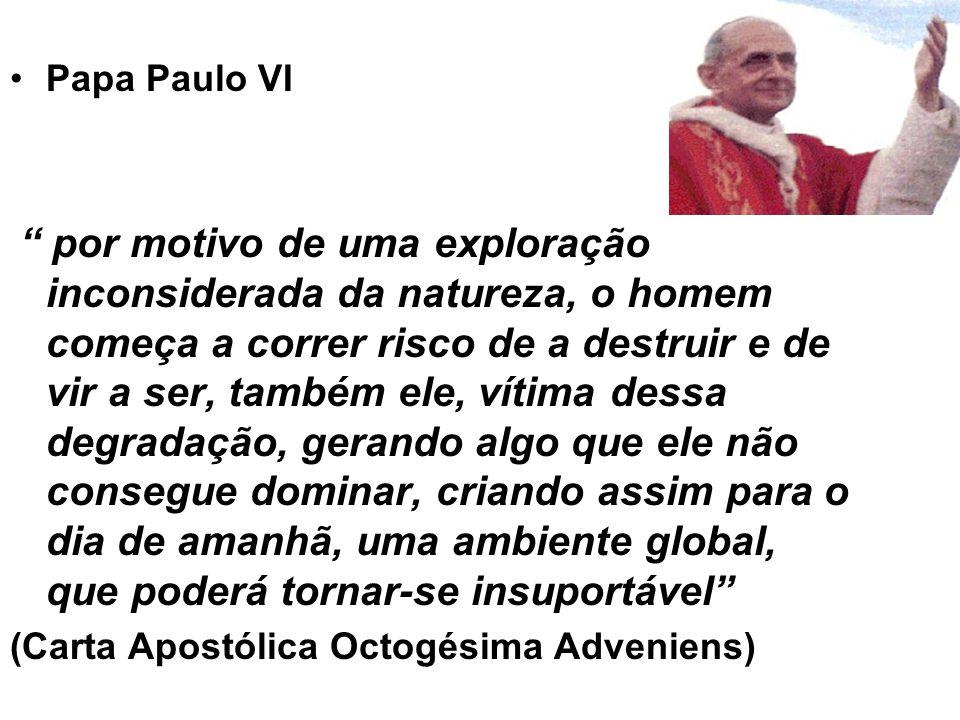 """Papa Paulo VI """" por motivo de uma exploração inconsiderada da natureza, o homem começa a correr risco de a destruir e de vir a ser, também ele, vítima"""