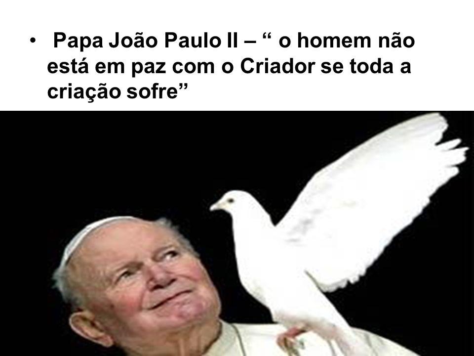 """Papa João Paulo II – """" o homem não está em paz com o Criador se toda a criação sofre"""""""