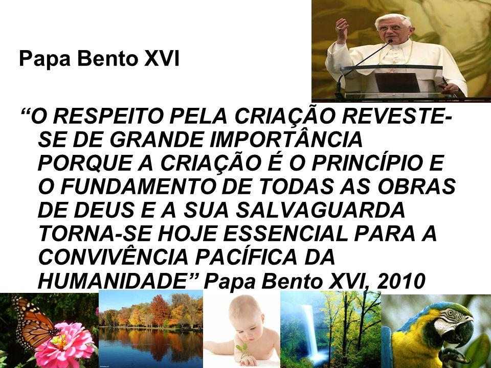 """Papa Bento XVI """"O RESPEITO PELA CRIAÇÃO REVESTE- SE DE GRANDE IMPORTÂNCIA PORQUE A CRIAÇÃO É O PRINCÍPIO E O FUNDAMENTO DE TODAS AS OBRAS DE DEUS E A"""
