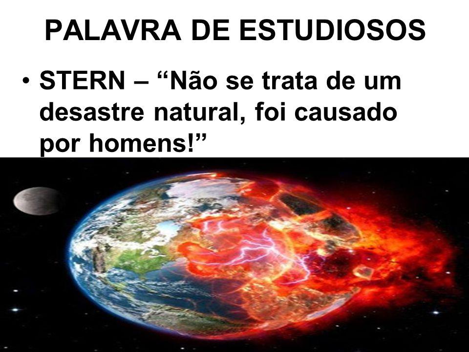 """PALAVRA DE ESTUDIOSOS STERN – """"Não se trata de um desastre natural, foi causado por homens!"""""""