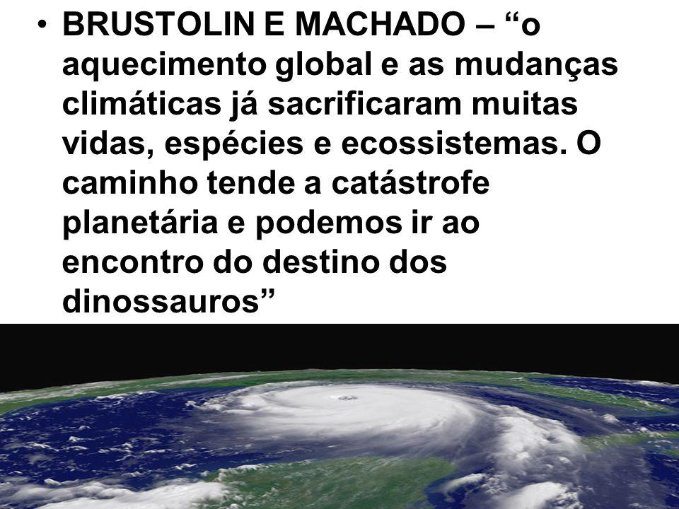 """BRUSTOLIN E MACHADO – """"o aquecimento global e as mudanças climáticas já sacrificaram muitas vidas, espécies e ecossistemas. O caminho tende a catástro"""