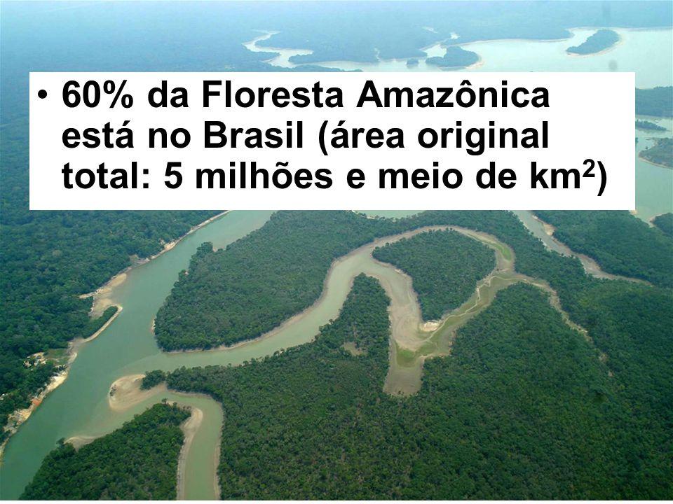 60% da Floresta Amazônica está no Brasil (área original total: 5 milhões e meio de km 2 )