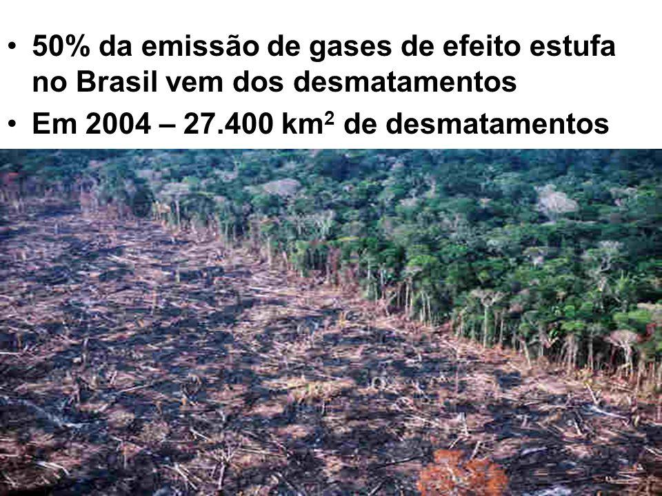 50% da emissão de gases de efeito estufa no Brasil vem dos desmatamentos Em 2004 – 27.400 km 2 de desmatamentos