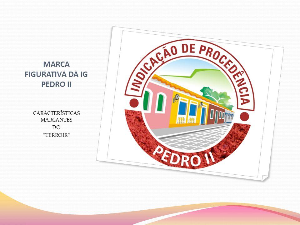 """MARCA FIGURATIVA DA IG PEDRO II CARACTERÍSTICAS MARCANTES DO """"TERROIR"""""""