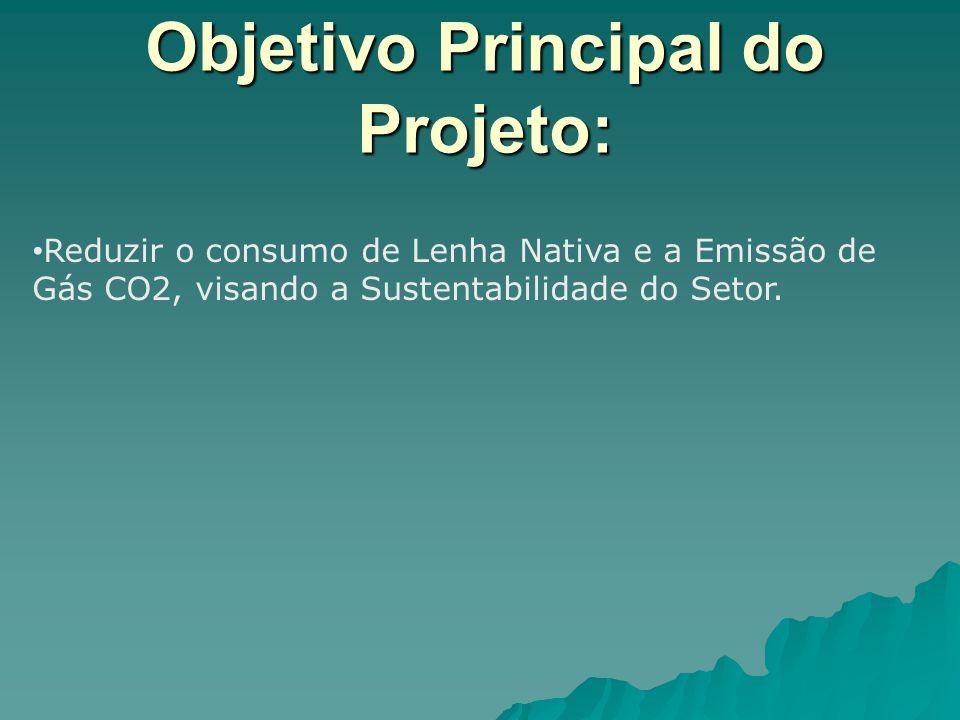 Objetivo Principal do Projeto: Reduzir o consumo de Lenha Nativa e a Emissão de Gás CO2, visando a Sustentabilidade do Setor.