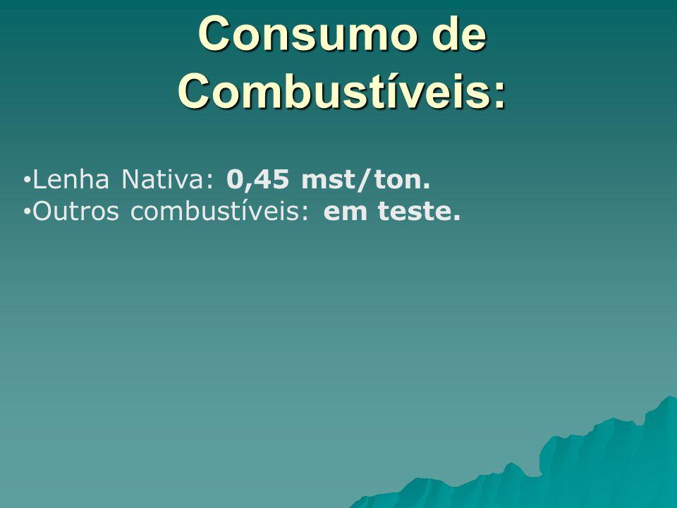 Consumo de Combustíveis: Lenha Nativa: 0,45 mst/ton. Outros combustíveis: em teste.