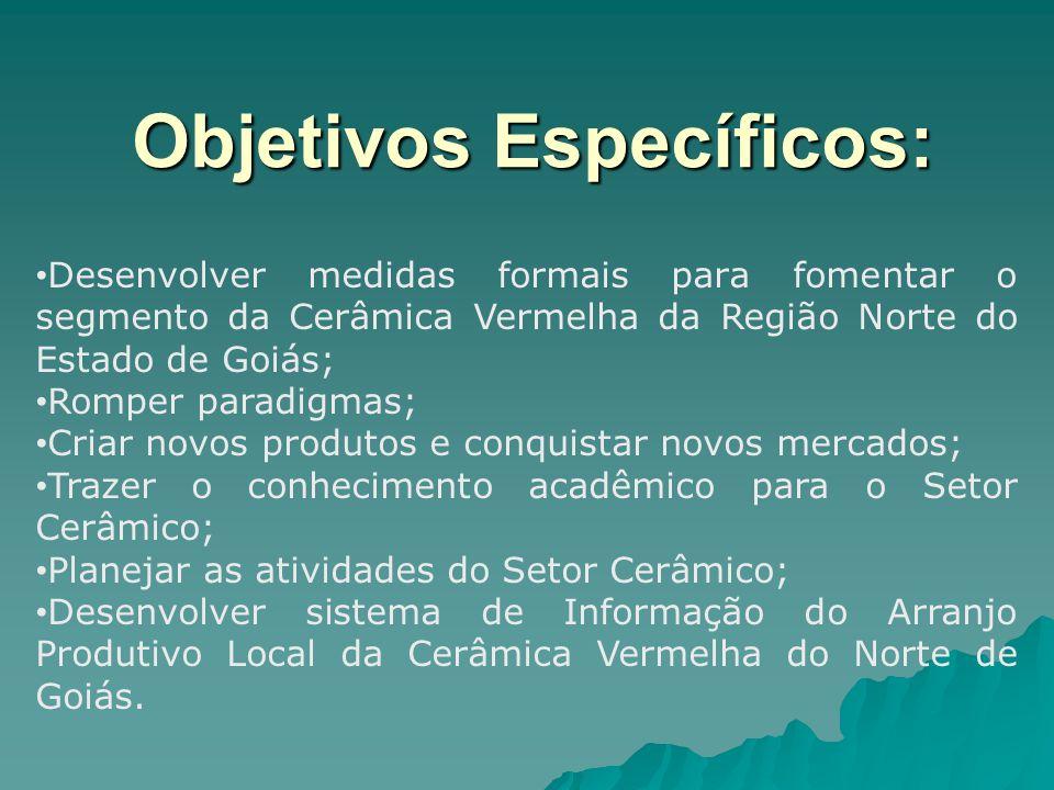 Objetivos Específicos: Desenvolver medidas formais para fomentar o segmento da Cerâmica Vermelha da Região Norte do Estado de Goiás; Romper paradigmas