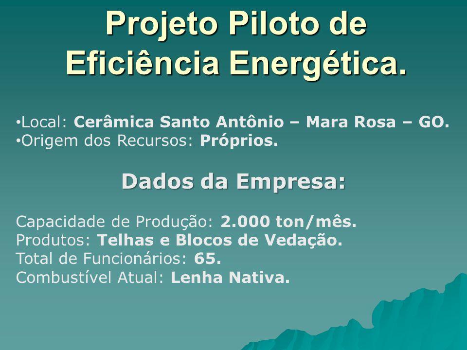 Projeto Piloto de Eficiência Energética. Local: Cerâmica Santo Antônio – Mara Rosa – GO. Origem dos Recursos: Próprios. Dados da Empresa: Capacidade d