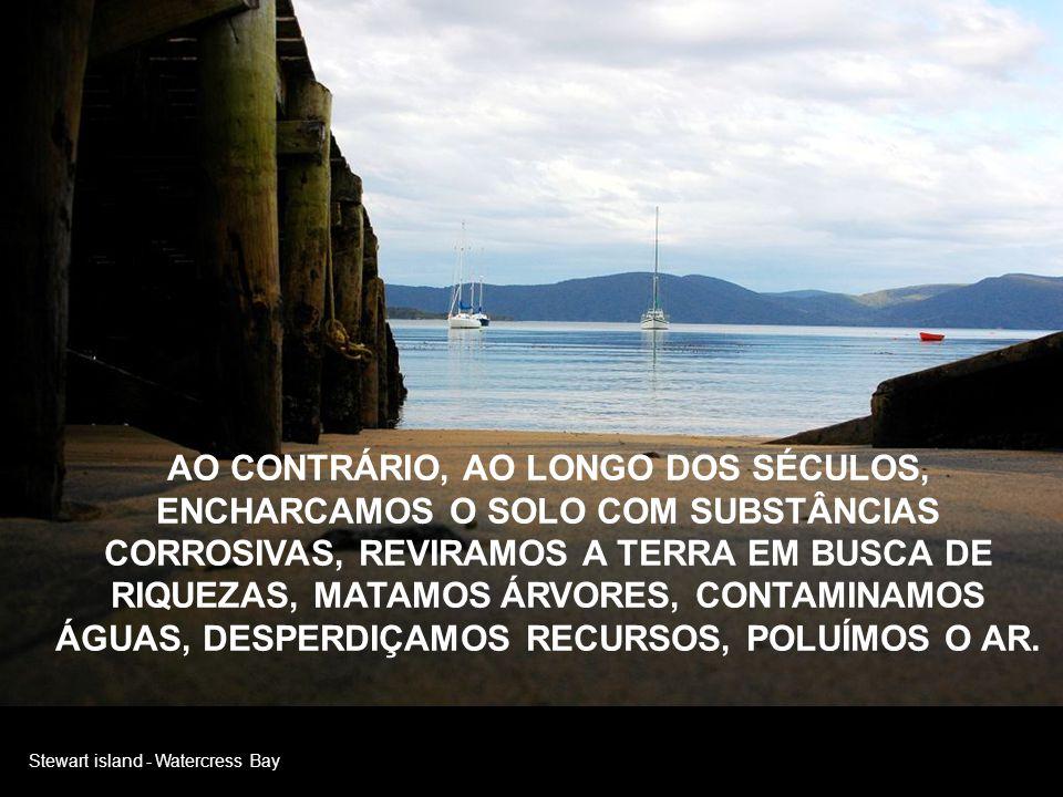 Nelson POUCOS SÃO AQUELES QUE RECONHECEM A GENEROSIDADE DA TERRA QUE NOS RECEBEU, OFERTANDO FRUTOS, FLORES, SOMBRA, ÁGUA, A VIDA, ENFIM.