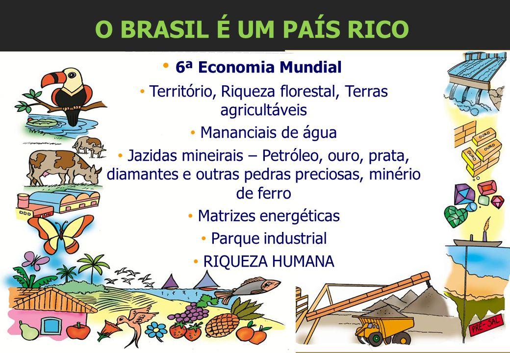 O BRASIL É UM PAÍS RICO 6ª Economia Mundial Território, Riqueza florestal, Terras agricultáveis Mananciais de água Jazidas mineirais – Petróleo, ouro,