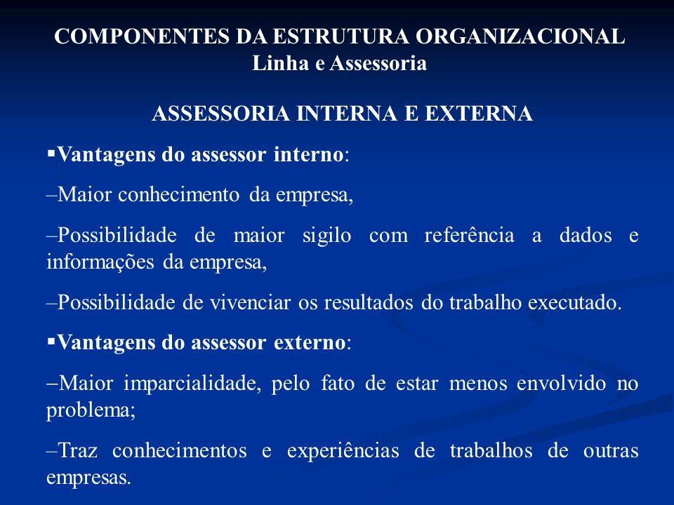 ASSESSORIA INTERNA E EXTERNA  Vantagens do assessor interno: –Maior conhecimento da empresa, –Possibilidade de maior sigilo com referência a dados e