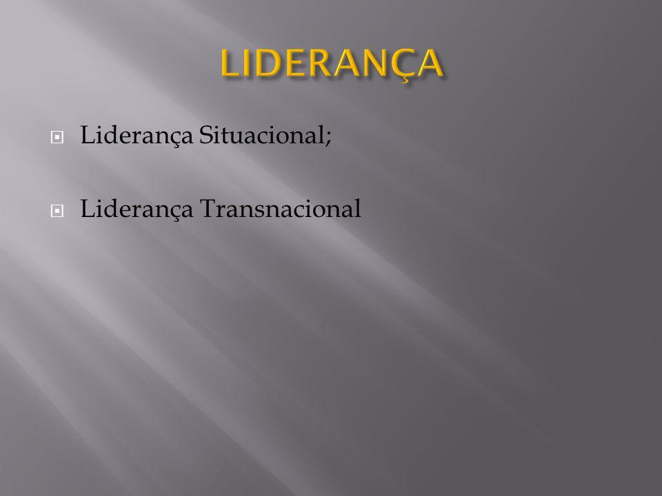  Liderança Situacional;  Liderança Transnacional