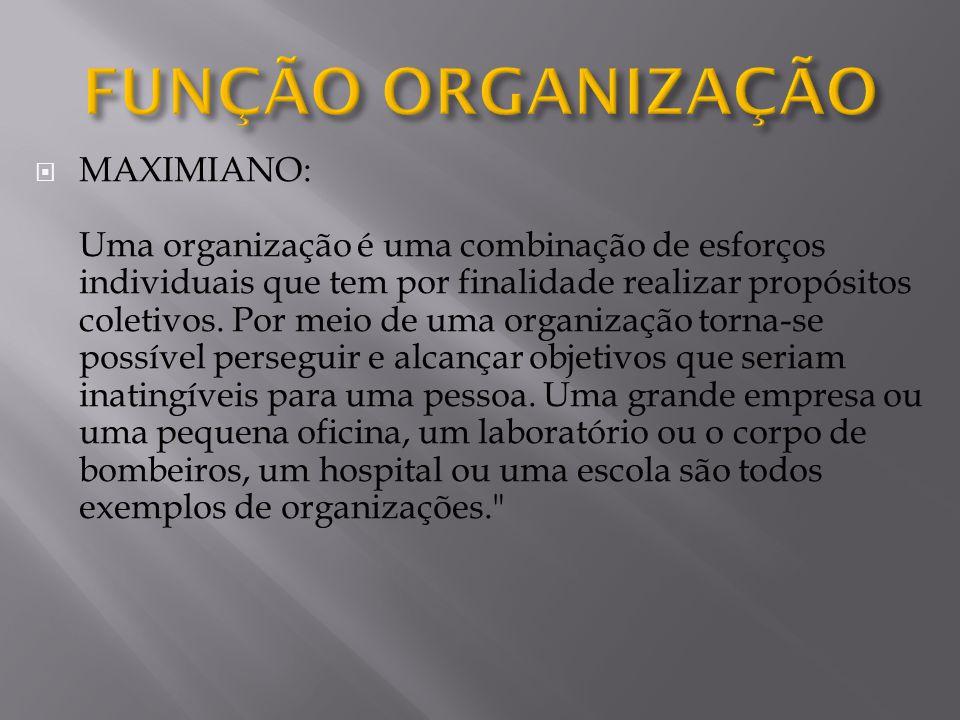  MAXIMIANO: Uma organização é uma combinação de esforços individuais que tem por finalidade realizar propósitos coletivos.