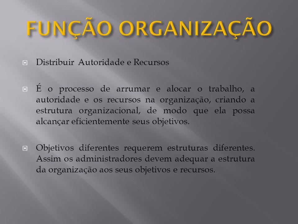  Distribuir Autoridade e Recursos  É o processo de arrumar e alocar o trabalho, a autoridade e os recursos na organização, criando a estrutura organizacional, de modo que ela possa alcançar eficientemente seus objetivos.