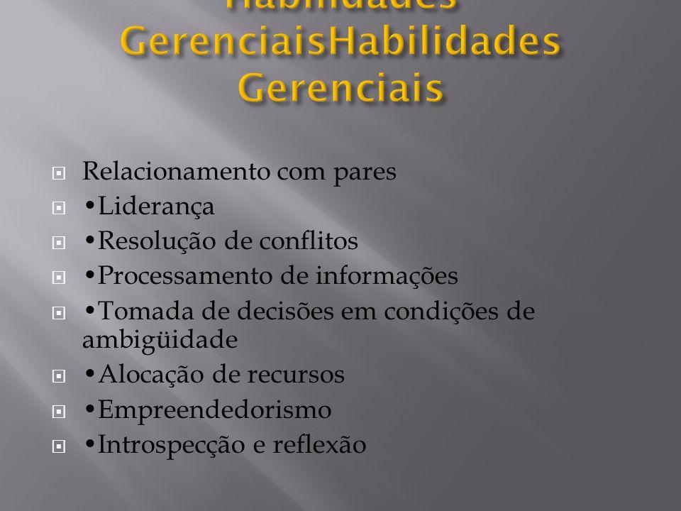  Relacionamento com pares  Liderança  Resolução de conflitos  Processamento de informações  Tomada de decisões em condições de ambigüidade  Aloc