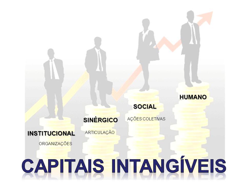 INSTITUCIONAL SINÉRGICO SOCIAL HUMANO ORGANIZAÇÕES ARTICULAÇÃO AÇÕES COLETIVAS