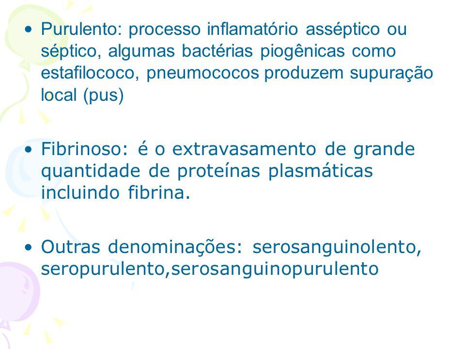 Purulento: processo inflamatório asséptico ou séptico, algumas bactérias piogênicas como estafilococo, pneumococos produzem supuração local (pus) Fibr