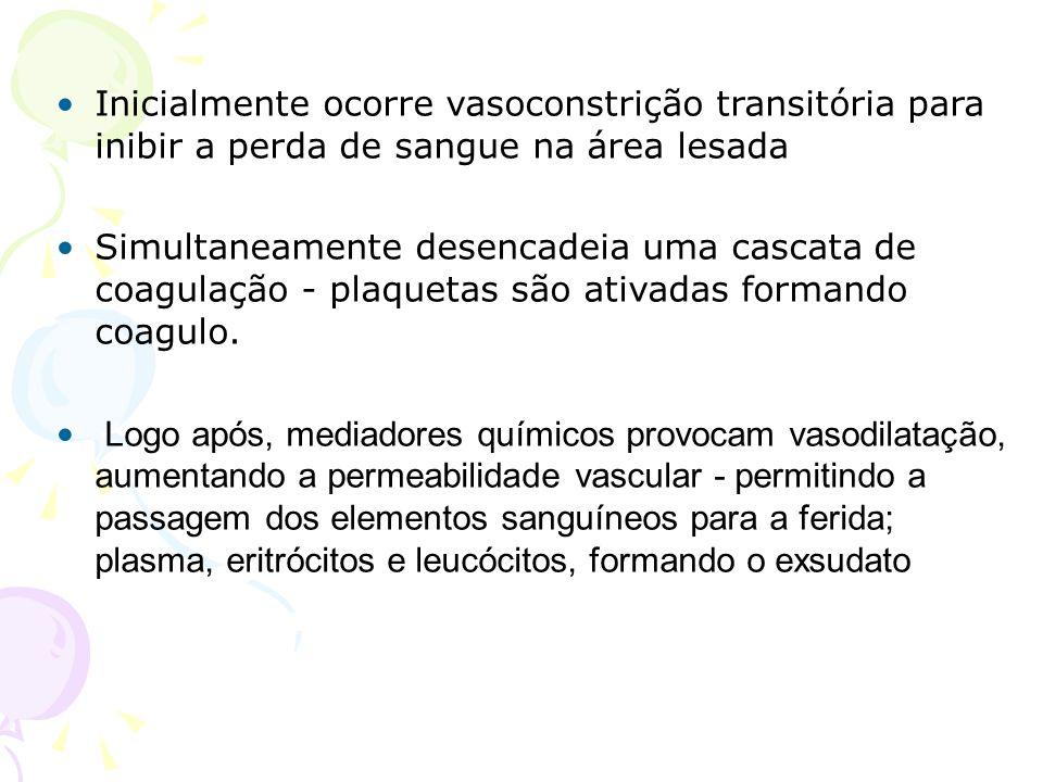 Inicialmente ocorre vasoconstrição transitória para inibir a perda de sangue na área lesada Simultaneamente desencadeia uma cascata de coagulação - pl