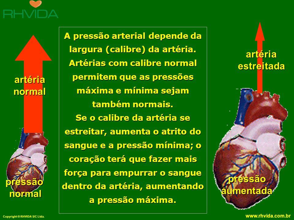 Copyright © RHVIDA S/C Ltda. www.rhvida.com.br A pressão arterial depende da largura (calibre) da artéria. Artérias com calibre normal permitem que as