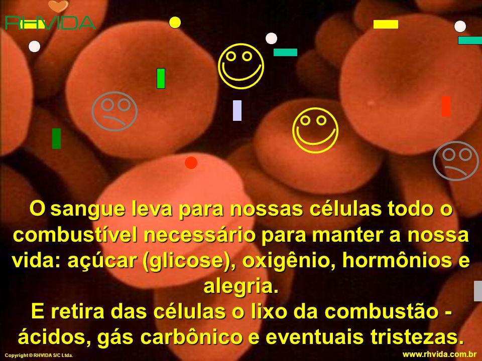 Copyright © RHVIDA S/C Ltda. www.rhvida.com.br O sangue leva para nossas células todo o combustível necessário para manter a nossa vida: açúcar (glico