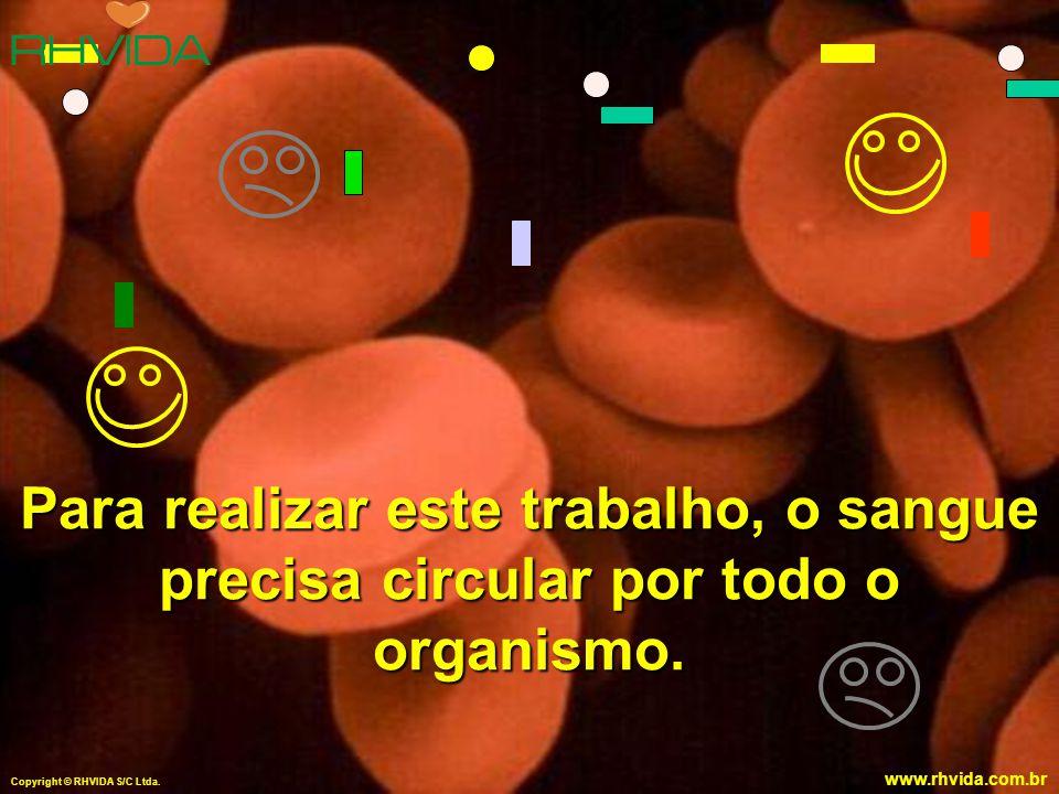Copyright © RHVIDA S/C Ltda. www.rhvida.com.br Para realizar este trabalho, o sangue precisa circular por todo o organismo. Copyright © RHVIDA S/C Ltd