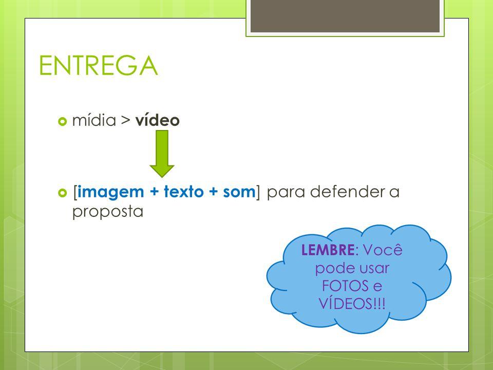 Comentário  Print do Comentário mais impactante na visão do grupo Comentário  Print do Comentário com maior número de Curtidas estratégia  Qual estratégia foi utilizada para publicizar o vídeo.