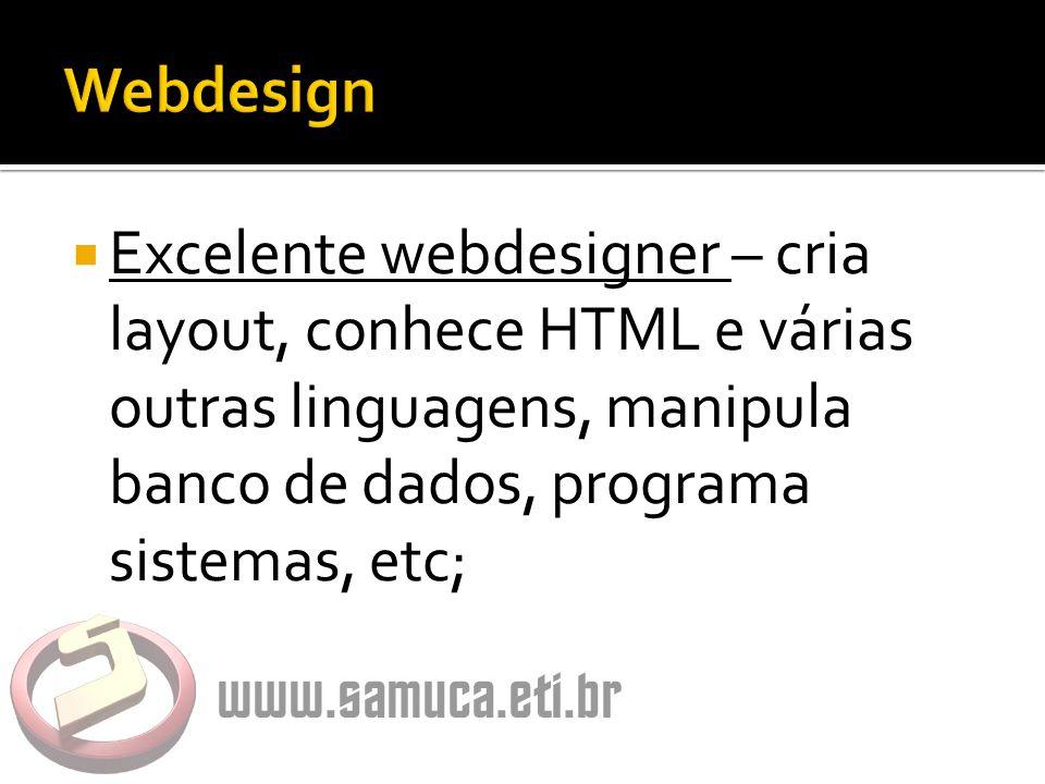  Excelente webdesigner – cria layout, conhece HTML e várias outras linguagens, manipula banco de dados, programa sistemas, etc;