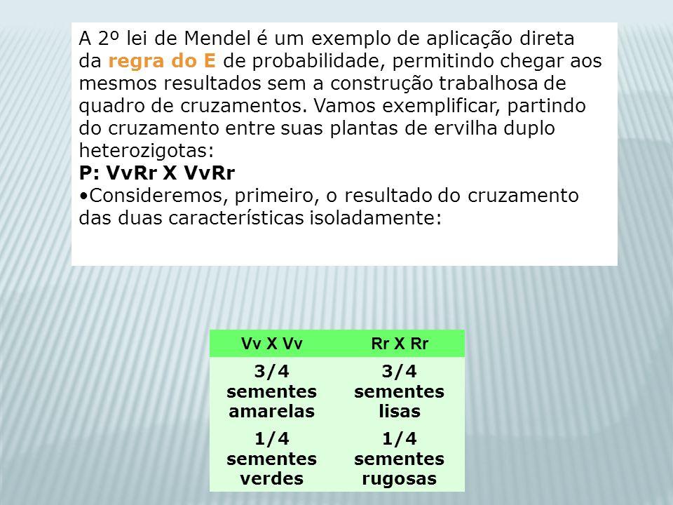 Vv X VvRr X Rr 3/4 sementes amarelas 3/4 sementes lisas 1/4 sementes verdes 1/4 sementes rugosas A 2º lei de Mendel é um exemplo de aplicação direta d