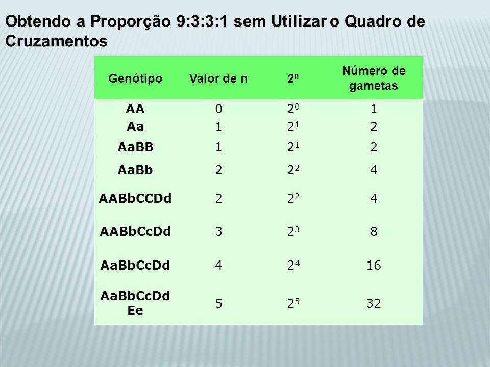 GenótipoValor de n2n2n Número de gametas AA02020 1 Aa12121 2 AaBB12121 2 AaBb22 4 AABbCCDd22 4 AABbCcDd32323 8 AaBbCcDd42424 16 AaBbCcDd Ee 52525 32 O