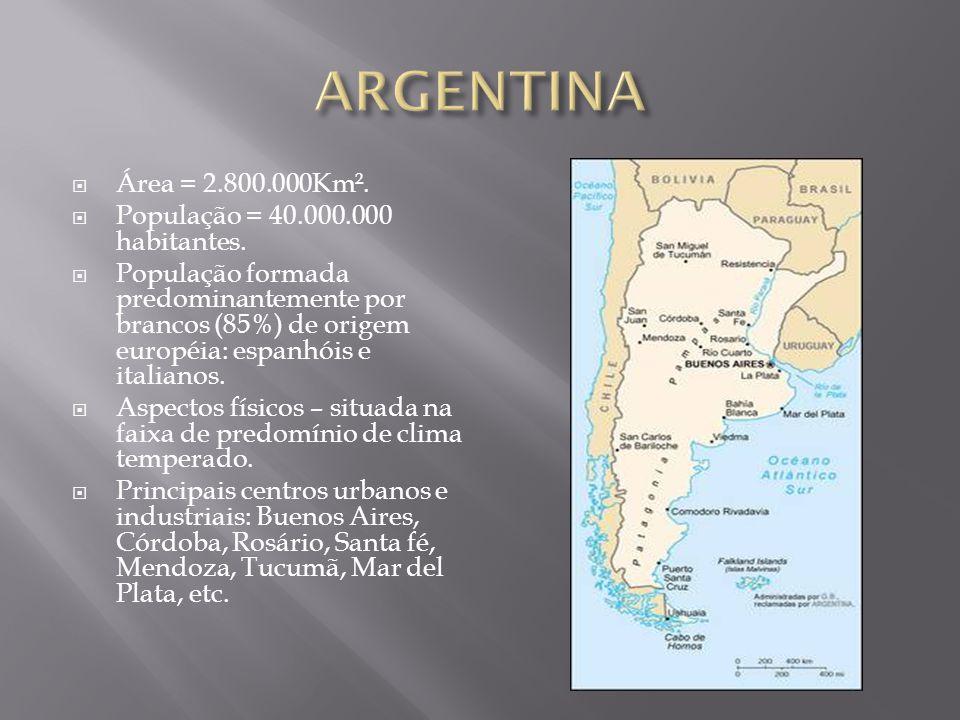  Área = 2.800.000Km².  População = 40.000.000 habitantes.  População formada predominantemente por brancos (85%) de origem européia: espanhóis e it