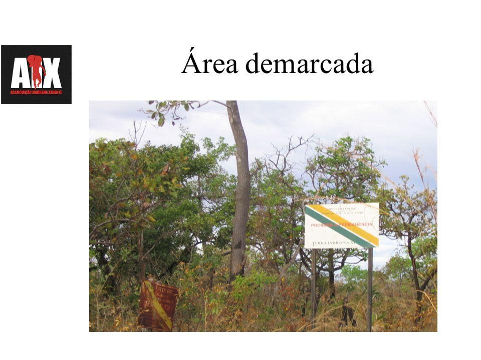 Principais problemas Muitos acontecimentos trouxeram mudanças sociais, culturais e ambientais para nossas comunidades: Invasões do território por não indígenas, sobretudo através das estradas (madereiros, motoristas, pescadores e cazadores).