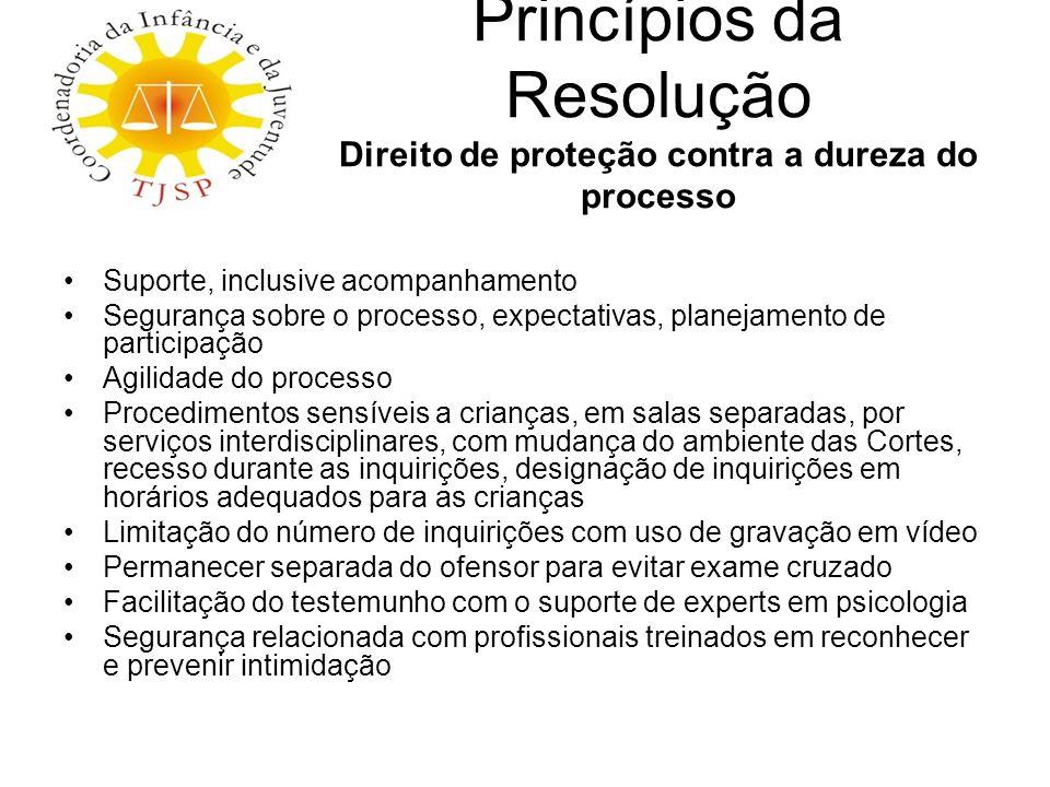Princípios da Resolução Direito de proteção contra a dureza do processo Suporte, inclusive acompanhamento Segurança sobre o processo, expectativas, pl