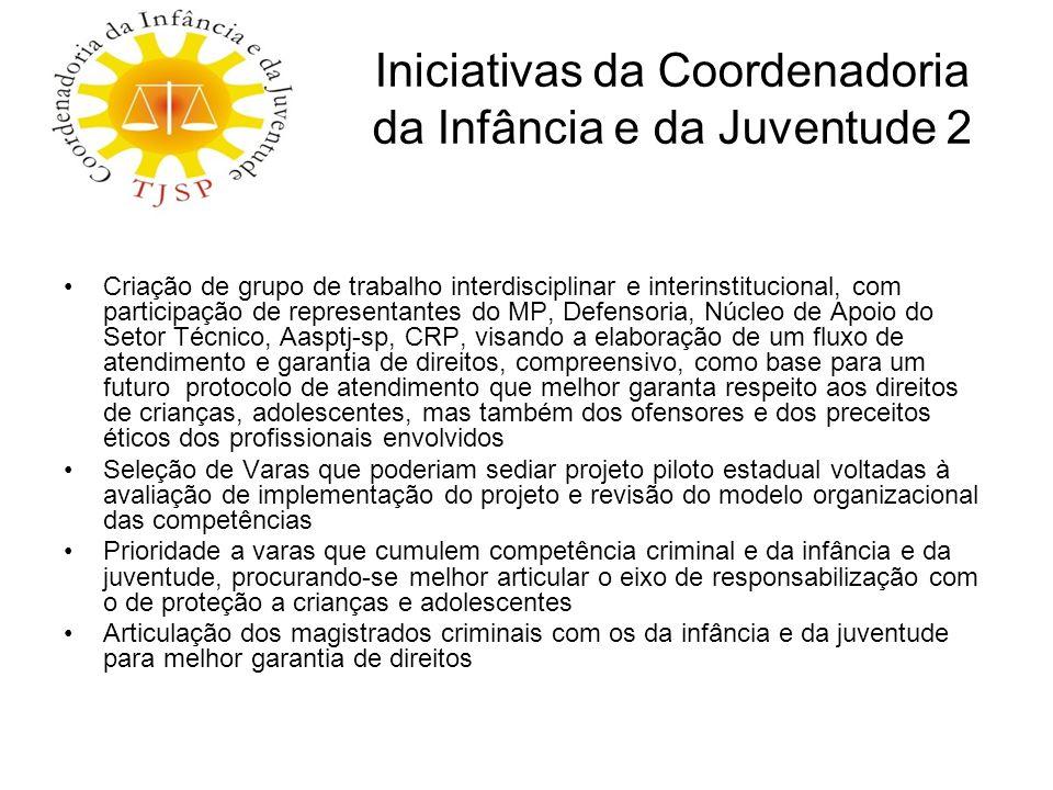 Iniciativas da Coordenadoria da Infância e da Juventude 2 Criação de grupo de trabalho interdisciplinar e interinstitucional, com participação de repr