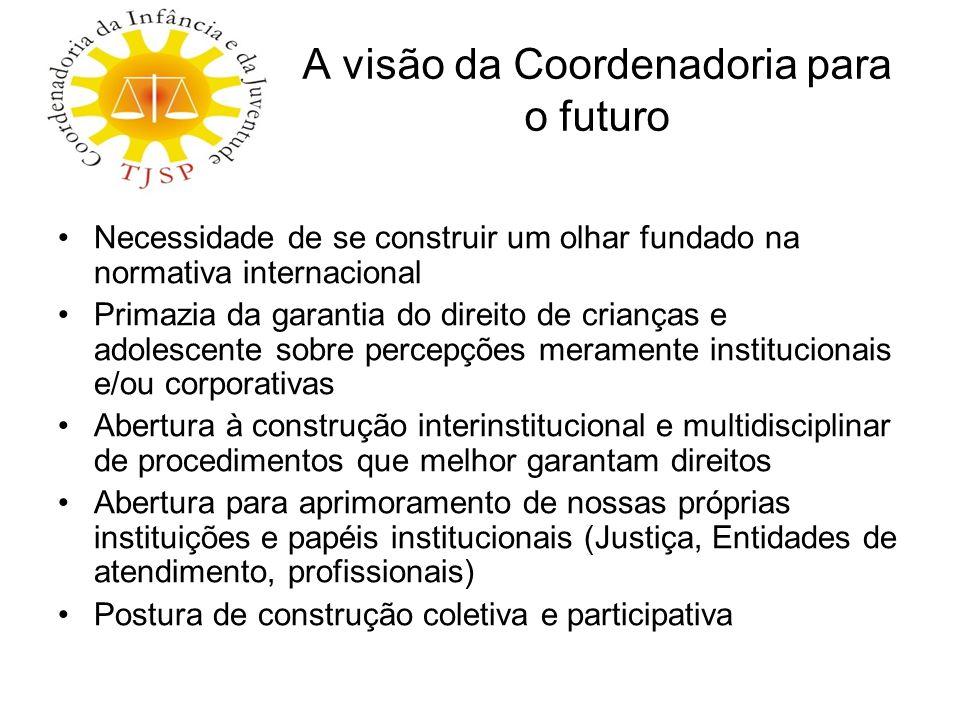 A visão da Coordenadoria para o futuro Necessidade de se construir um olhar fundado na normativa internacional Primazia da garantia do direito de cria