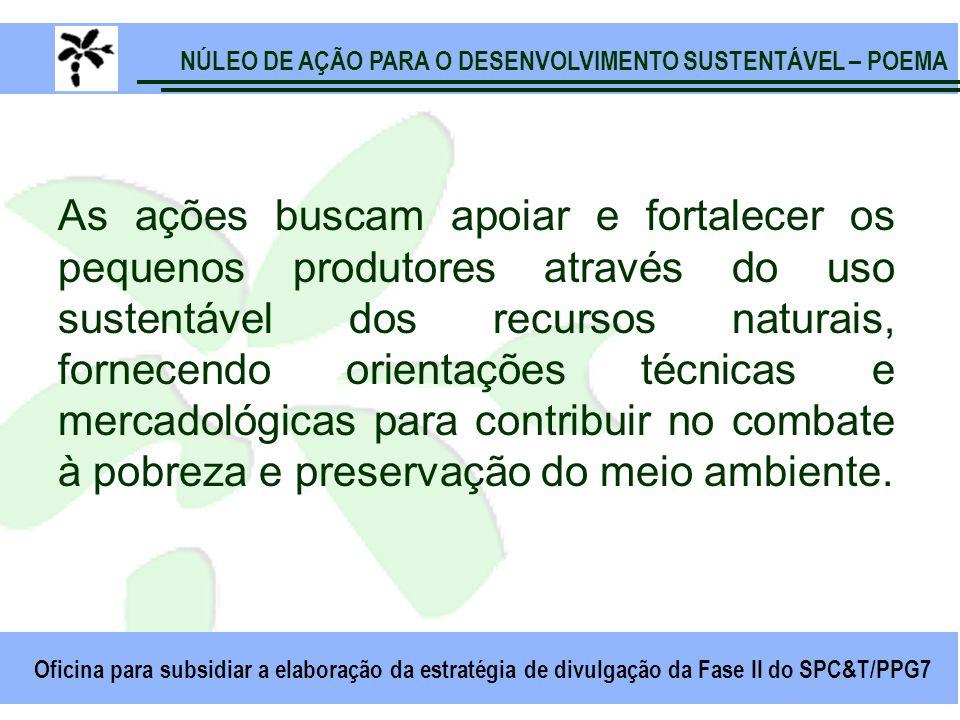 NÚLEO DE AÇÃO PARA O DESENVOLVIMENTO SUSTENTÁVEL – POEMA Oficina para subsidiar a elaboração da estratégia de divulgação da Fase II do SPC&T/PPG7 As a