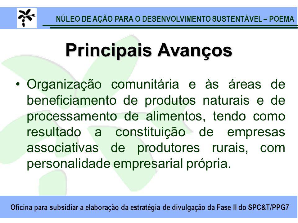 NÚLEO DE AÇÃO PARA O DESENVOLVIMENTO SUSTENTÁVEL – POEMA Oficina para subsidiar a elaboração da estratégia de divulgação da Fase II do SPC&T/PPG7 Prin