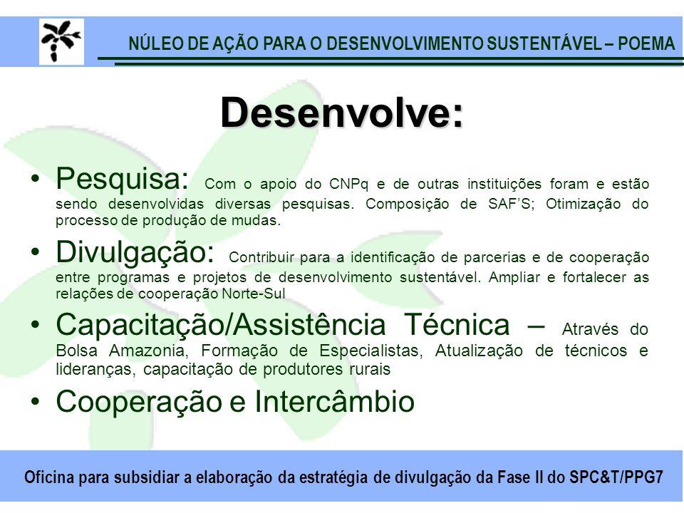 NÚLEO DE AÇÃO PARA O DESENVOLVIMENTO SUSTENTÁVEL – POEMA Oficina para subsidiar a elaboração da estratégia de divulgação da Fase II do SPC&T/PPG7 Dese