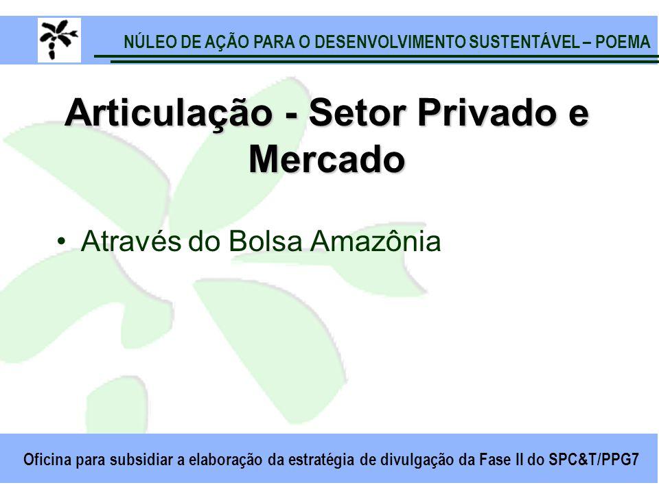 NÚLEO DE AÇÃO PARA O DESENVOLVIMENTO SUSTENTÁVEL – POEMA Oficina para subsidiar a elaboração da estratégia de divulgação da Fase II do SPC&T/PPG7 Articulação - Setor Privado e Mercado Através do Bolsa Amazônia