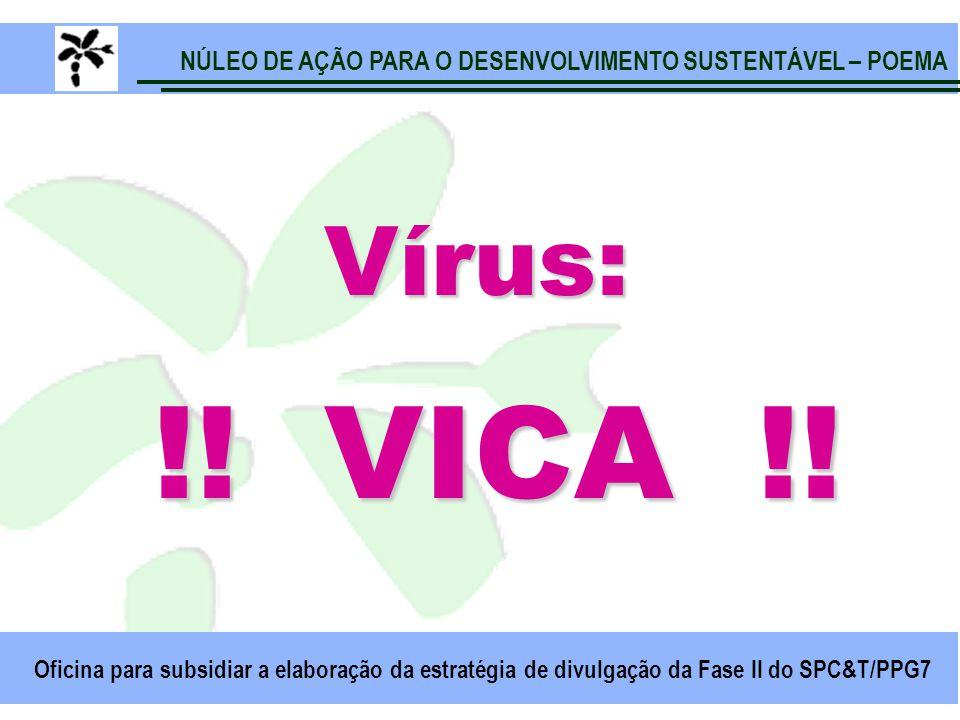 NÚLEO DE AÇÃO PARA O DESENVOLVIMENTO SUSTENTÁVEL – POEMA Oficina para subsidiar a elaboração da estratégia de divulgação da Fase II do SPC&T/PPG7 Vírus: !.