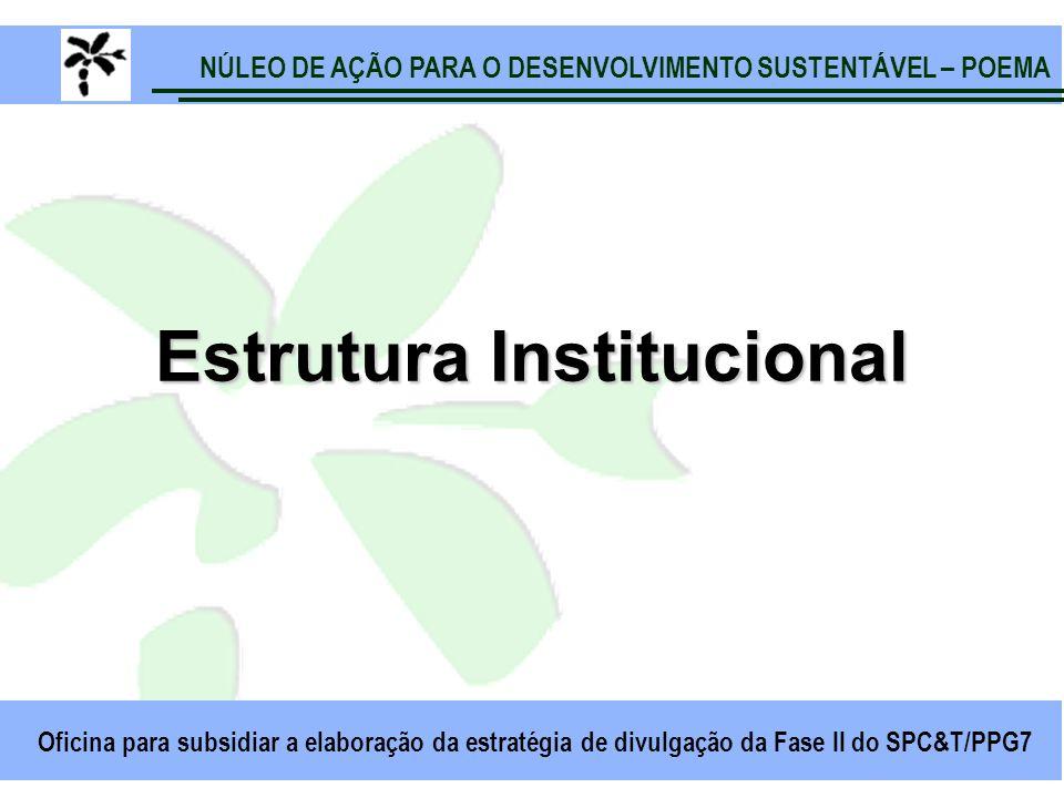 NÚLEO DE AÇÃO PARA O DESENVOLVIMENTO SUSTENTÁVEL – POEMA Oficina para subsidiar a elaboração da estratégia de divulgação da Fase II do SPC&T/PPG7 Estrutura Institucional