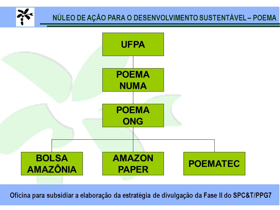 NÚLEO DE AÇÃO PARA O DESENVOLVIMENTO SUSTENTÁVEL – POEMA Oficina para subsidiar a elaboração da estratégia de divulgação da Fase II do SPC&T/PPG7 UFPA POEMA NUMA POEMA ONG BOLSA AMAZÔNIA AMAZON PAPER POEMATEC