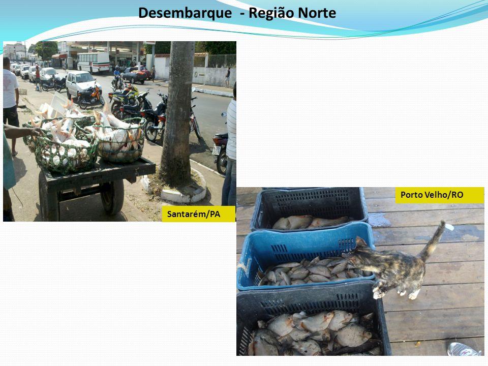 Desembarque - Região Norte Porto Velho/RO Santarém/PA