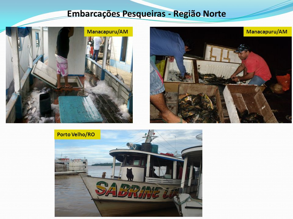 Embarcações Pesqueiras - Região Norte Porto Velho/RO Manacapuru/AM