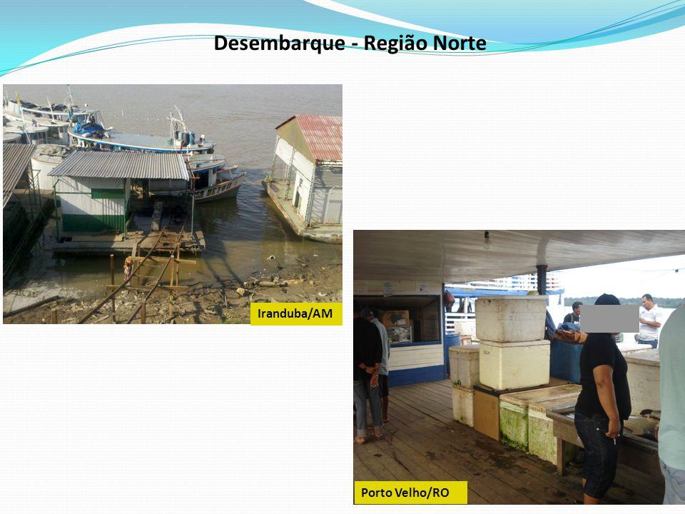 Desembarque - Região Norte Santarém/PA Manaus/AM