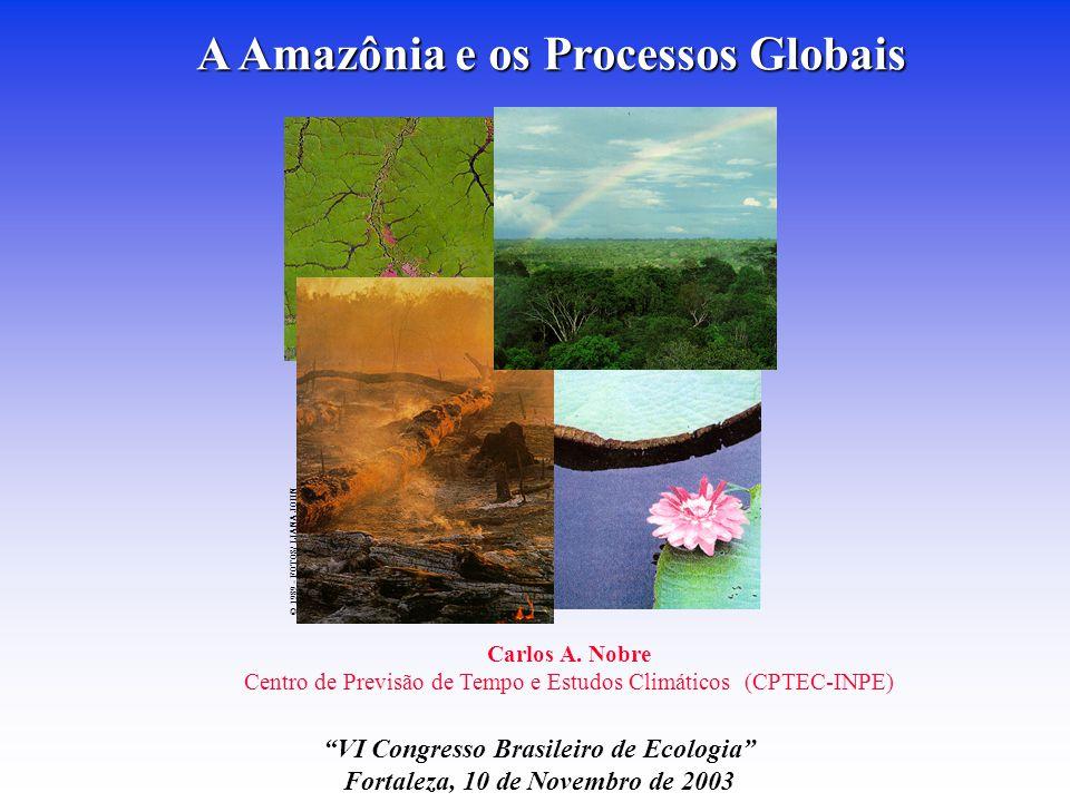 © 1989 - FOTOS/ LIANA JOHN A Amazônia e os Processos Globais Carlos A.