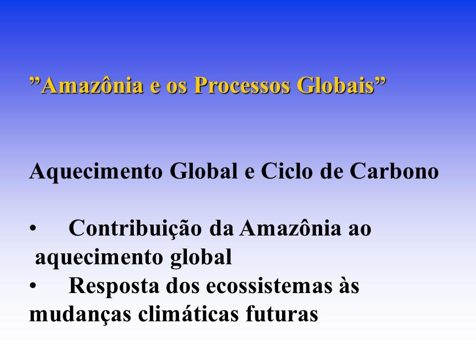 Amazônia e os Processos Globais Aquecimento Global e Ciclo de Carbono Contribuição da Amazônia ao aquecimento global Resposta dos ecossistemas às mudanças climáticas futuras